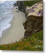Enchanted Spaces California La Jolla Metal Print