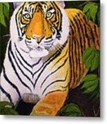 Endangered Bengal Tiger Metal Print