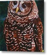 Endangered - Spotted Owl Metal Print