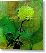 Enduring Yellow Rose Metal Print