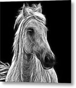 Energetic White Horse Metal Print