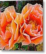 Engelmann Prickly Pear Cactus Flowers In Big Bend National Park-texas Metal Print