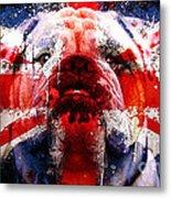 English Bull Dog Metal Print