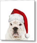 English Bulldog In Christmas Hat Metal Print
