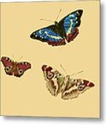 English Butterflies Metal Print