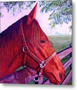 English Horse Metal Print by Lorraine Foster