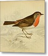 English Robin Metal Print by Philip Ralley