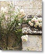 English Roses II Metal Print