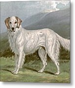 English Setter - Left Metal Print