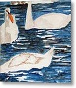 English Swan In The Queen's Garden Metal Print