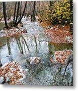 Enipeas In Autumn Metal Print