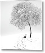 Enjoy The Silence Metal Print