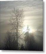 Fog Of Enlightenment Metal Print