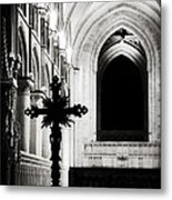 Enlightenment  Metal Print by Lisa Knechtel