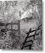Entrance To An Old House Metal Print