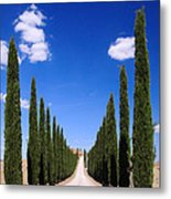 Entrance To Villa Tuscany - Italy Metal Print
