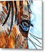 Equine Reflection Metal Print