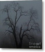 Erie Arbor Elder Metal Print