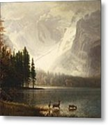Estes Park Colorado Whytes Lake Metal Print
