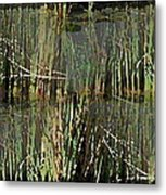 Estuaries Edge Metal Print