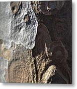 Eucalyptus Bark Abstract Metal Print