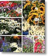 European Flower Market Collage Metal Print