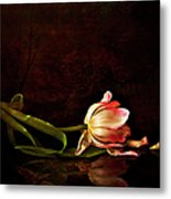 Even Though A Flower Fades Metal Print