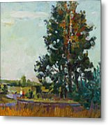 Evening At The Forest Edge Metal Print