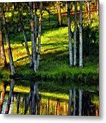 Evening Birches Painted Metal Print