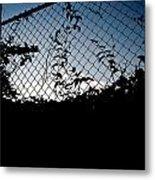 Evening Fence Metal Print
