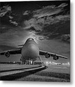 Evening Flight Metal Print