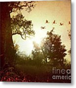 Evening Flying Geese Metal Print