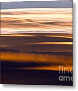 Evening Golds Metal Print