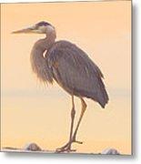 Evening Heron - Colorful Pastel Metal Print