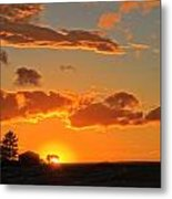 Evening Highlighted Metal Print by Dan Quam