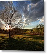 Evening In The Park Metal Print