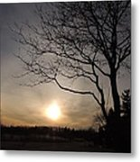 Evening Light Metal Print