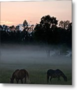 Evening Mist Metal Print