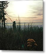 Evening Mist In Fall Metal Print