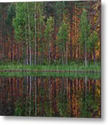Evening Pond Metal Print