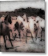 Evening Roundup - Featured In Comfortable Art Group Metal Print