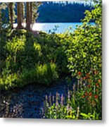 Evening Shadows At Lake George Metal Print