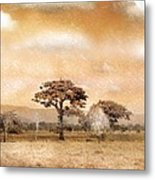 Evening Showers Metal Print