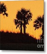 Evening Silhouette Metal Print