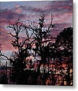 Evening Sky Color Metal Print by Ella Char