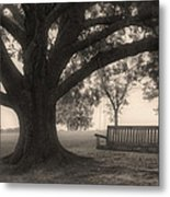 Evening Swing - Oak Tree - Altus Arkansas Metal Print