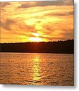 Evening Swirrels Metal Print
