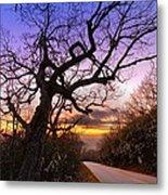 Evening Tree Metal Print by Debra and Dave Vanderlaan