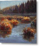 Ever Flowing Alaskan Creek In Autumn Metal Print