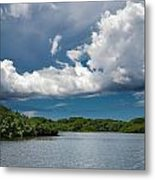 Everglades 0254 Metal Print